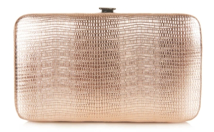 Metallic_Snake_iPhone_5_Purse_-_New_In_This_Week_-_New_In_-_Topshop_USA