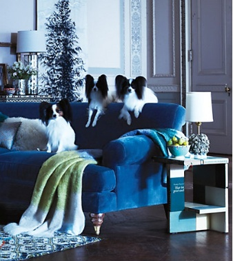 Willoughby_Sofa_anthropologie